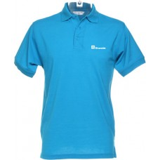 Riverside Ladies Polo Shirt (Teal)